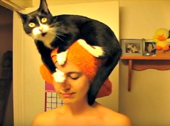 Here's A Girl Very First Youtube Video Featuring Her Cat, That Quickly Went Viral