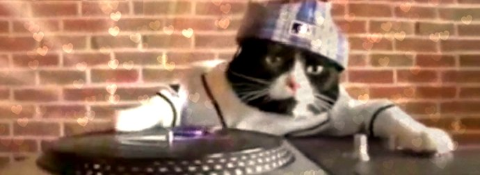 Adorable Cat IS Called DJ Kitty And He Drops Beats & Scratches Like A Boss. WATCH!