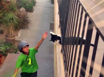 Caught On Camera - Tuxedo Cat High-Five's Kid Riding Through On His Bike. Wait For It!