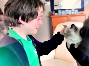 Young Boy Totally Loses It After His Mom Surprises Him By Finding His Lost Senior Cat.