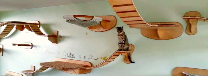 This German Designer Makes Cat Condos, Bridges And Walkways That Your Kitty Will Drool Over