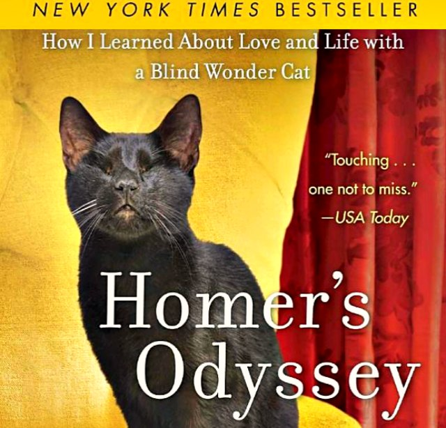 homers odyssey blind wonder cat book amazon kindle