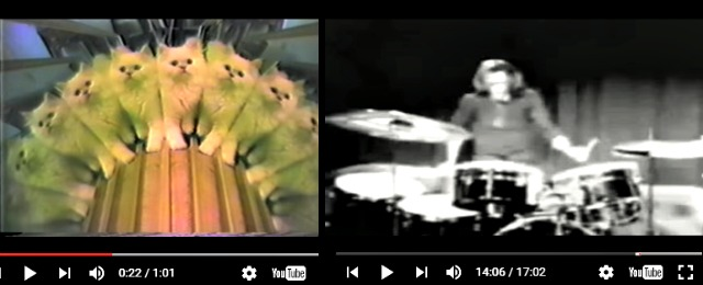 youtube kaleidoscope kitten cat with iron butterfly gadda vida